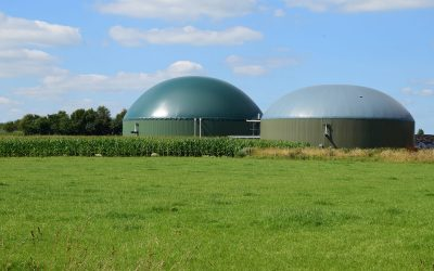 Biogas Production and its Role in Decarbonisation