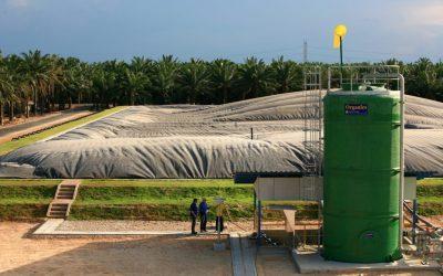 Biogas as a Fuel Source