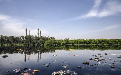 Appropriate Technology for Ammonia Removal from Wastewater